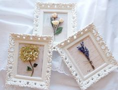 framed dried flowers.., I dry all my flowers for wreaths, which I am really good at making and enjoy doing...but this is another great idea..got to try it