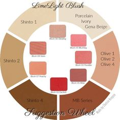 LimeLight by Alcone Blush suggestion wheel