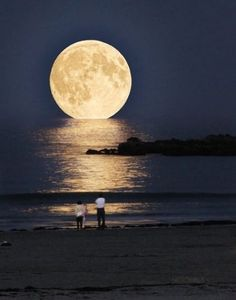 Moon seems to be touching the sea water!!!! <3