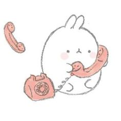 • cute kawaii edit molang kiiseu •