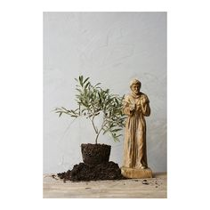 Creative Co-Op Secret Garden St. Francis Statue - was $194.97, now $73.99 (62% Off). Picked by amyb @ Wayfair