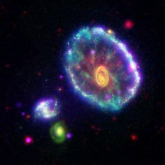 "The Cartwheel galaxy as seen by 3 space telescopes. 100 million years ago, another, smaller galaxy tumbled through the Cartwheel galaxy and left behind ""ripples"" of star creation. The outer ring is the first ripple, with high ultraviolet output, and the inner yellow spot is from the second ripple, which was smaller and high in infrared output. From NASAimages.org #space #cartwheel 