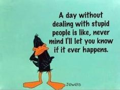"""""""A day without dealing with stupid people is like, never mind I'll let you know if it ever happens."""""""