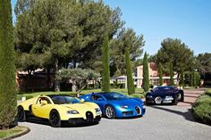 Photos From Bugatti Driving Experience At Circuit Paul Ricard