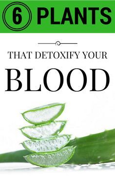 6 plants that detoxify your blood.