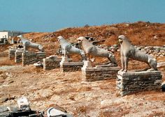 The ancient Greek theatre of Delos, built in 250 B.C., is set to undergo restoration. Picture: statues of lions on Delos.  The Central Archaeological Council (KAS) of the Greek ministry for culture and tourism has given green light to the restoration of the ancient theatre of Delos, one of the most important religious centres of ancient Greece, an islands of the Cyclades where Apollo, god of light, was born according to mythology.