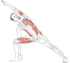 yoga poses for edema