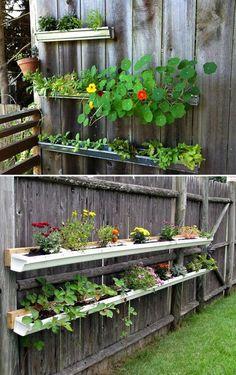 Amazingly Creative Long Planter Ideas for Your Patio