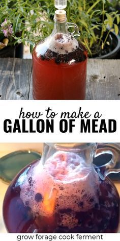 Want to make mead, but intimidated by making a large batch? I'll show you how to make a gallon of mead! This simple mead recipe is perfect for beginners! Homemade Wine Recipes, Homemade Alcohol, Homemade Liquor, Homebrew Recipes, Beer Recipes, Alcohol Recipes, Drink Recipes, Fireball Recipes, Brewing Recipes