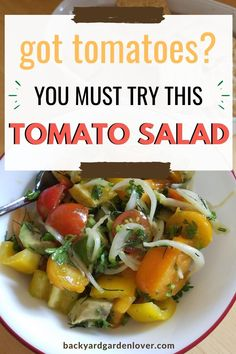 Not sure what to do with all of those tomatoes ripening just about now? Make tomato salad! Here I collected 10 of my favorite ways to use tomatoes in salads. See which one you'll LOVE! #tomatoes #tomatosalad #summerrecipes #tomatorecipes #harvest #toomanytomatoes Lunch Recipes, Summer Recipes, Real Food Recipes, Best Tomato Salad Recipe, Grow Your Own Food, Food To Make, Long Term Food Storage, Organic Recipes, Ethnic Recipes