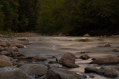 Wild Creek #1 - null