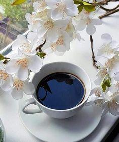 Poze Cu Cafea Si Flori De Primavara
