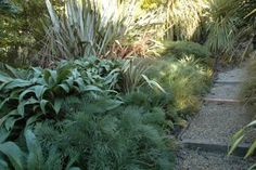 Need some low maintenance garden design ideas? Learn the fundamentals and tips to creating the perfect low mainteance outdoor space in our feature article. Small Garden Landscape, Narrow Garden, Side Garden, Landscape Plans, Landscape Architecture, Landscape Design, Landscaping On A Hill, Landscaping Ideas, Low Maintenance Garden Design