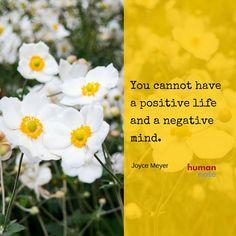 """""""You cannot have a positive life and a negative mind."""" Joyce Meyer #positivity"""