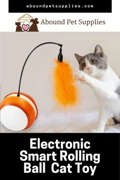 Irregular rolling ball with LED color changing lamp. Detachable magnetic feather. Your cat will love it. These interactive cat toys have a LED light flash effect, two-stage mode. This self -rotating cat toy will keep your pet busy and get them up and moving. Get more exercise for indoor cats when they try to catch the moving ball.