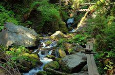 Kaňon Bílé Opavy - dřevěné lávky a mostek, Karlova Studánka My Heritage, Czech Republic, Hunting, Nature, Travel, Outdoor, Outdoors, Naturaleza, Viajes