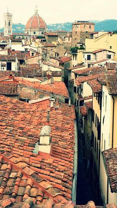 #Florence houserent #penthouse Charming #amazing #terrace Available from October 1 2014 until May 31