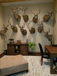 Deer Mount Decor, Deer Head Decor, Taxidermy Decor, Taxidermy Display, Rustic Man Cave, Hunting Rooms, Deer Hunting, Man Cave Room, Wildlife Decor