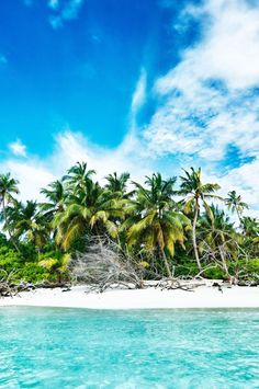 No bullsh*t: You don't have to be a billionaire to own a private island. A slew of secluded atolls are on the market for a steal — we're talking less than the average cost of a house! Here are nine dream escapes to make Gilligan proud. By Chelsea Bengier  Note: The prices in this article were accurate at time of writing but are subject to change.#Jetsetter
