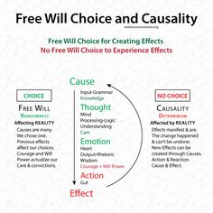 Free Will Choice and Causality. We have the Choice to align and unite with Natural Law, or not. The Effects we Cause cannot be changed once they manifest. The Power to create Change is in our will embodying the Higher Will of Natural Law.