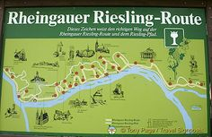 Rhine Riesling Tour Route, Germany - Towns along the Rheingau Riesling Route include Lorchhausen, Lorch, Assmannshausen, Rudesheim am Rhein, Geisenheim, Johannisberg, Angle, Mittelheim, Oestrich, Hallgarten, Hattenheim, Kloster Eberbach, Erbach, Eltville, Kiedrich, Rauenthal, Martinsthal, Walluf, Wiesbaden, Wiesbaden-Frauenstein, Wiesbaden-Schierstein, Mainz-Kostheim, Hochheim and Florsheim-Wicker. Went on this tour in April 1991