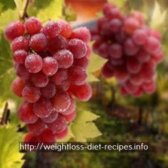 lunch options for weight loss - how to effectively lose belly fat - ways to lose weight healthy - natural weight loss -  3678586976