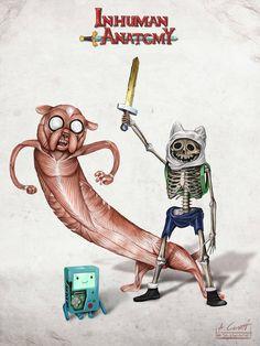 BMO, Jake & Finn's anatomy;)