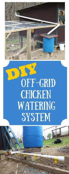 For the same cost as one indoor waterer, we built an outdoor system with 10x the capacity that won't require much extra work from us to keep up.