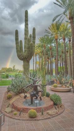 Scottsdale,AZ  Notice the rainbow !!