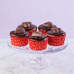 Buckeye Cupcakes with Chocolate Peanut Butter Ganache. Happiness in a small cake.