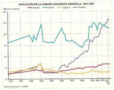 EVOLUCIÓN DE LA CABAÑA GANADERA ESPAÑOLA