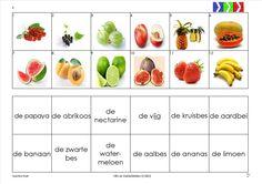 mini loco fruit 4