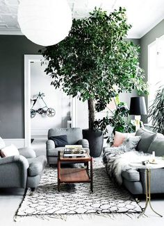I'm not sure I'm sold on the huge potted tree in this grey Nordic style living room, but definitely adds something in terms of both color and texture.