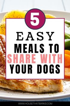 Dog Grooming Funny 5 Easy meals to share with the dog food dog food.Dog Grooming Funny 5 Easy meals to share with the dog food dog food Dog Nutrition, Animal Nutrition, Dog Treat Recipes, Dog Food Recipes, Dog Breeds Little, Pet Allergies, Best Dog Food, Pet Care Tips, Dog Care