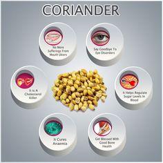 Coriander And Its Immense Health Benefits | VeggiesInfo For More Info: http://veggiesinfo.com/coriander-health-benefits/