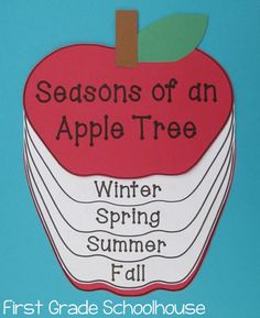 Seasons of an Apple Tree. Read and draw book.