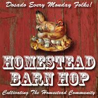 The weekly Homestead Barn Hop hosted at The Prairie Homestead-- more homesteading info than you can shake a stick at! Homestead Gardens, Farm Gardens, Outdoor Gardens, Heinz Von Heiden, Homesteading Blogs, Modern Homesteading, Dutch Oven Cooking, Homestead Survival, Survival Skills