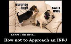 BWAHAHAHAHAHA!!! How NOT to approach an INFJ #Introvert #INFJ