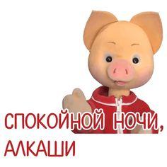 Stupid Memes, Dankest Memes, Funny Memes, Stupid Pictures, Cute Pictures, Malboro, Hello Memes, Happy Memes, Russian Memes