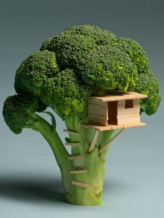 Broccoli House by Brock Davis