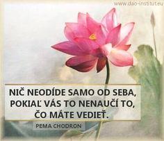 dao-dharma-10-10_pema-chodron_02