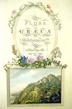 Flora Graeca - one of the title pages with decorative elements