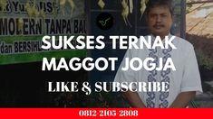 Salam Sukses Ternak Maggot BSF Pakan Murah Ikan & Unggas Jogja Black Soldier Fly, Mens Tops, T Shirt, Supreme T Shirt, Tee Shirt, Tee