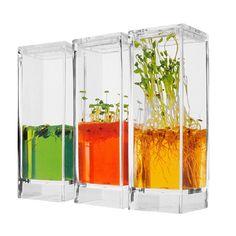 Plantarium. Suelo fértil no tóxico, en el que las plantas pueden crecer sin necesidad de ser regadas. Leer mas http://ecoinventos.com/plantarium/