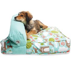 DO-IT YOURSELF DOG BED KIT stuff it with old clothes, rags, stuffing.