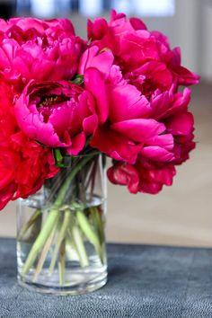 Hot Pink Flowers, Fake Flowers, Fresh Flowers, Pretty Flowers, Pink Flower Arrangements, Peonies Centerpiece, Floral Centerpieces, Pink Peonies, Peony