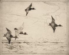 Blue Birds - Frank Weston Benson 1912American 1862-1951Etching
