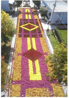 Fall Flower Carpet Elkhart IN - part of the Quilt Garden Trail