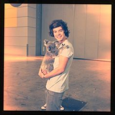 #HarryStyles with a new friend #koalabear