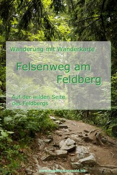Rock path on Feldberg – My Store Camping Photography, Nature Photography, Rock Path, First Class Tickets, Festival Camping, How To Get Away, Travel Alone, Portugal Travel, Black Forest